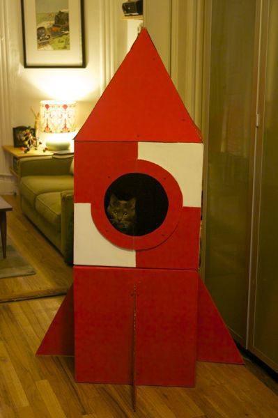 Como hacer una casa para gatos bien original