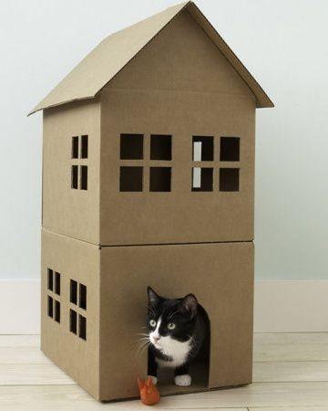 casas para gatos de carton