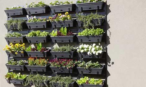 Jardines verticales paso a paso todo manualidades for Materas para jardines verticales